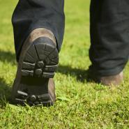 Lawn care technician from Coastal Turf walking on a lawn.