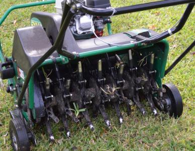 Aeration tool being pushed over the top of grass by a lawn care technician from Coastal Turf.
